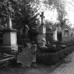 Grabsteine der Familie Loerkens 1998